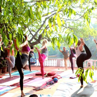 Yoga Retreat Goa Yogastunde