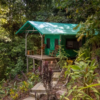 Yoga Retreat Costa Rica Zelt im Regenwald