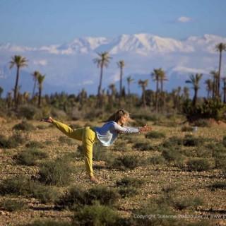 Yoga München / JIVA/ANANDYOGA SHALA MAXVORSTADT / Yoga Travel Marokko