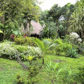 Yoga Retreat Costa Rica Lodge1
