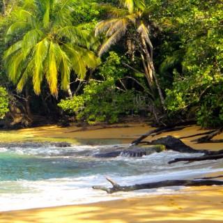 Yoga Retreat Costa Rica Beach
