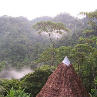 Yoga Retreat Costa Rica Rainforest House