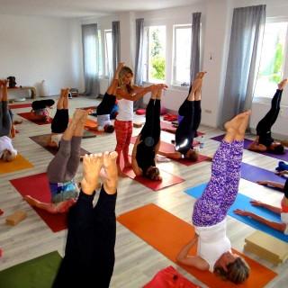Yoga München / JIVA/ANANDYOGA SHALA MAXVORSTADT / Yogalehrer Ausbildung München