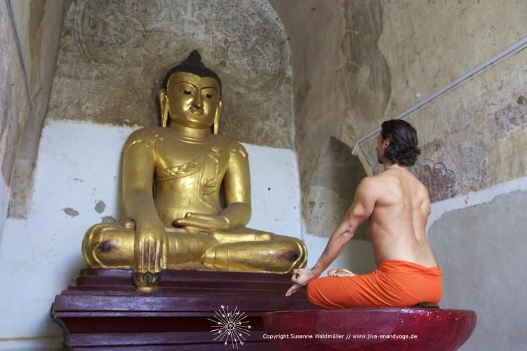 Yogalehrer Ausbildung 2015 JIVA/ANAND YOGA SHALA MAXVORSTADT