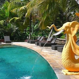 Yoga Retreat Bali Pool