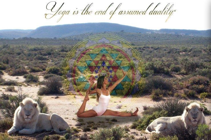 jiva-anand-yoga-münchen-susanne-waldmüller-vinyasa-yoga-stunden-LION
