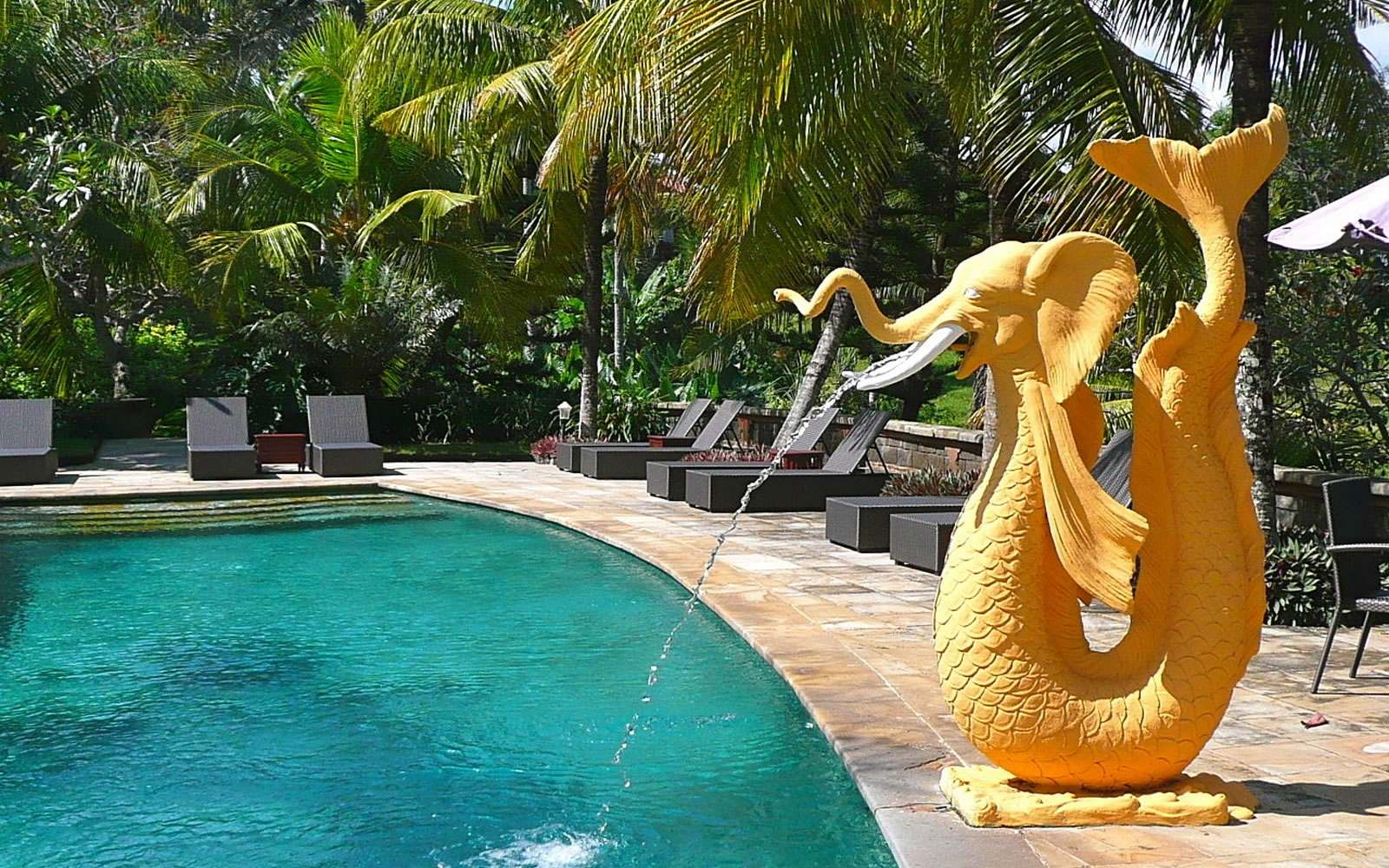 JIVA/ANAND Yoga Retreat Bali Pool